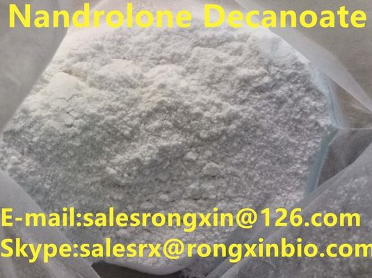 Chiny CAS 360-70-3 White Legal Nandrolone Steroid, Nandrolone Decanoate Powder For Bulding Muscle C28H44O3 dystrybutor